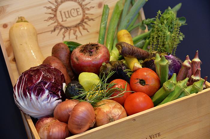 箱の中に様々な野菜が入っている